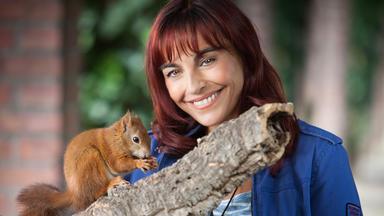 Hundkatzemaus - Welches Futter Ist Das Richtige Für Eichhörnchen?