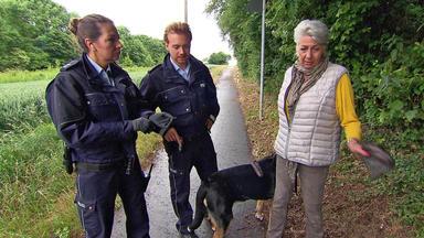 Der Blaulichtreport - Notruf In Hundehaufen Enthüllt Familiendrama