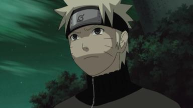 Naruto Shippuden - Narutos Schwur