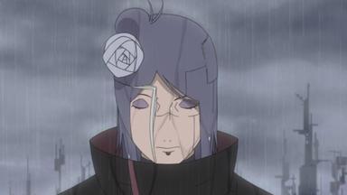 Naruto Shippuden - Die Blüte Der Hoffnung