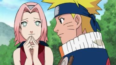 Naruto - Das Doppelte Guychen