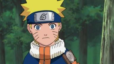 Naruto - Operation Revanche