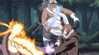 Naruto Shippuden - Der Anerkannte