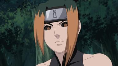 Naruto Shippuden - Helmspalter! Jinin Akebino