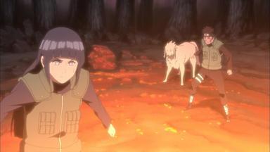 Naruto Shippuden - Zetsus Falle