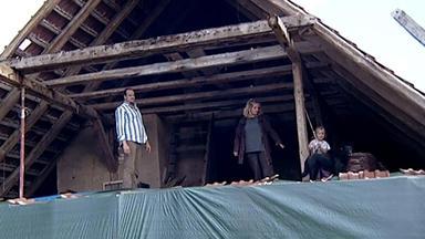 Die Schnäppchenhäuser - Ein Leben Auf Dem Bauernhof