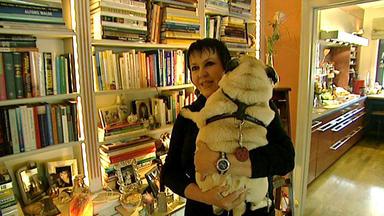 Exklusiv - Die Reportage - Lieber Mit Einem Tier Als Mit Dir! - Wenn Der Fressnapf Auf Dem Esstisch Steht