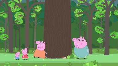 Peppa Pig - Der Fischteich