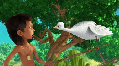 Das Dschungelbuch - Pavo, Der Mutige