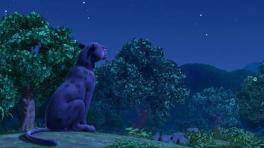 Das Dschungelbuch - Sternenbilder-lektion