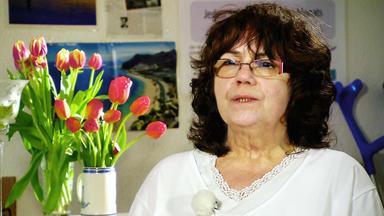 Nachbarschaftsstreit - Werner Vs. Frauendienst