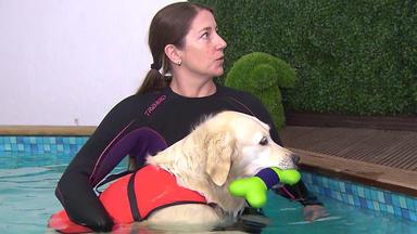 Hundkatzemaus - Thema U.a.: Tierische Traumberufe: Tierphysiotherapeut