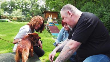 Hundkatzemaus - Thema U.a.: Auf Der Suche Nach Dem Richtigen Haustier