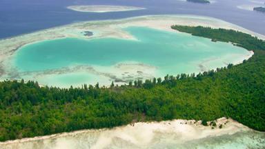 Wunderwelt Pazifik - Inseln