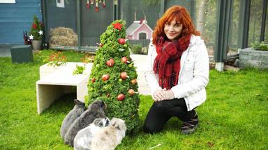 Hundkatzemaus - Thema U.a.: Zu Gast Bei Kaninchenexpertin Vanessa Traub