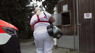 Im Einsatz - Jede Sekunde Zählt - Freilaufen Pferde Gefährden Einen Rettungseinsatz