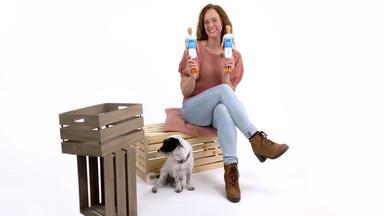 Hundkatzemaus - Thema U.a.: Kates 'tierische Experimente'