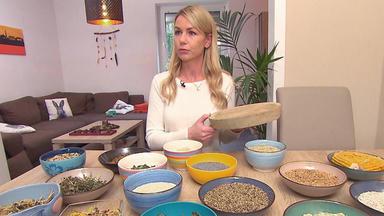 Hundkatzemaus - Thema U.a.: Gesunde Und Artgerechte Hamsterernährung