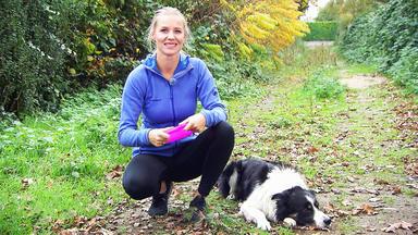 Hundkatzemaus - Thema U.a.: Dog Frisbee
