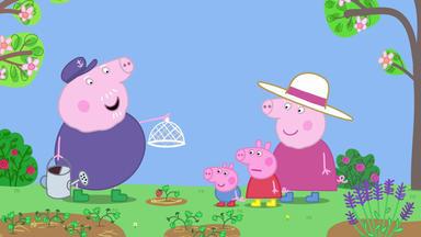 Peppa Pig - Erdbeeren