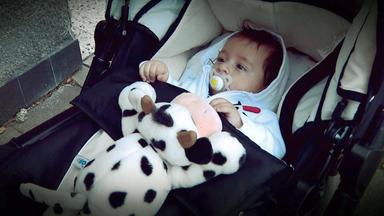 Verdachtsfälle - Falsches Baby Liegt Im Kinderwagen