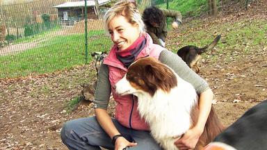 Hundkatzemaus - Thema U.a.: Job-check Beim Hundetrainer