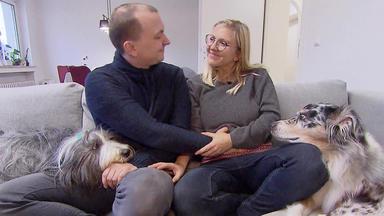 Hundkatzemaus - Thema U.a.: Leben Mit Baby & Hunden