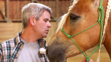 Die Pferdeprofis - Heute U.a.: Explosionsbündel \