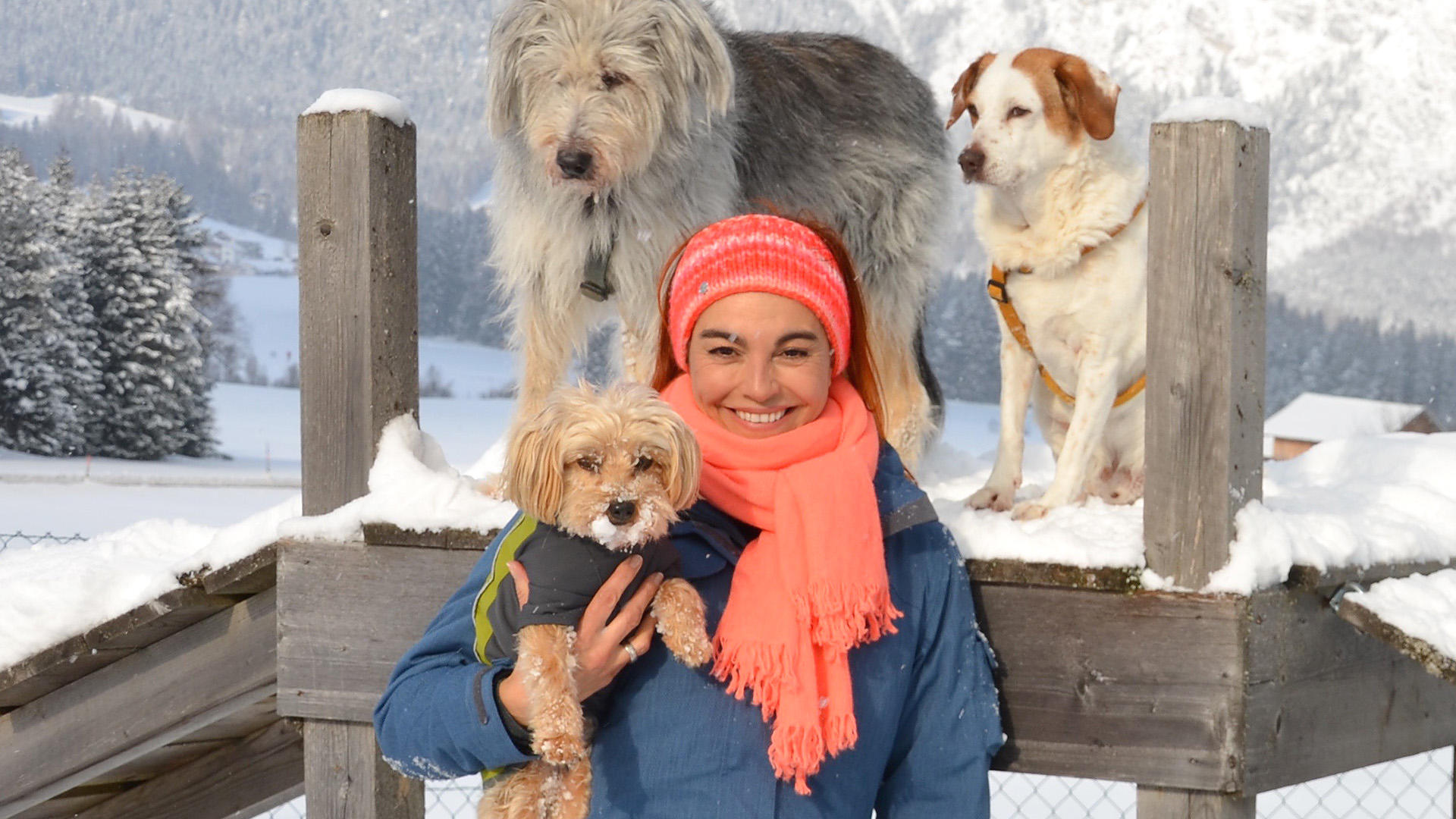 Winterirrtümer beim Hund | Folge 1