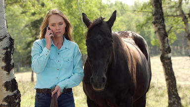 Heartland - Wo Die Wilden Pferde Leben