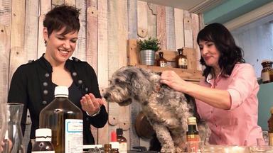 Hundkatzemaus - Thema U.a.: Zu Besuch Bei Kräuter-und Kosmetikexpertin Melanie Wenzel