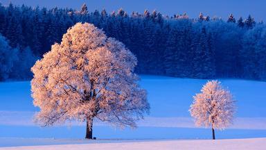 Winterwelten - Weiße Pracht Voller Gegensätze - Winterwelten - Weiße Pracht Voller Gegensätze