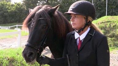 Hundkatzemaus - Heute U.a.: Faszination Islandpferde