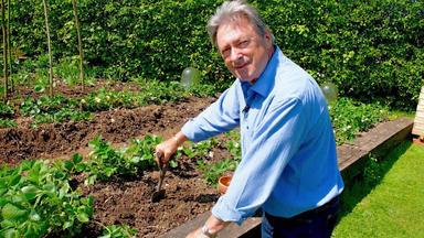 Mein Gemüsegarten Mit Alan Titchmarsh - Erdbeeren Für Alle Fälle