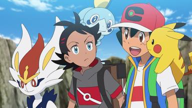 Pokémon Meister-reisen: Die Serie \/ 24 - Der Angehende Lauchstangen-meister!