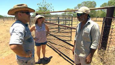 Die Reimanns - Unterwegs Im Australischen Outback