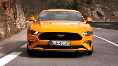 Auto Mobil - Themen U.a. Ford Mustang Fl