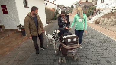 Hebammen Im Einsatz - Percy & Maria Haben Einen Eifersüchtigen Hund