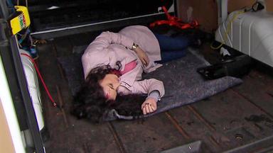 Verdachtsfälle - Polizei Findet Bewusstlose Frau Im Kofferraum
