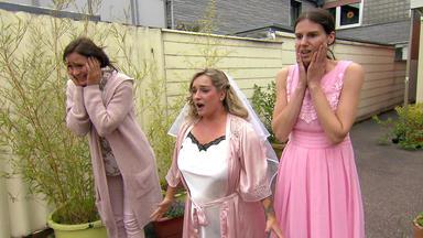 Die Trovatos - Detektive Decken Auf - Hochzeitsplanerin Droht Existenz Zu Verlieren