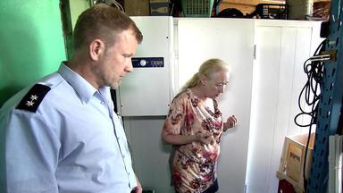 Die Trovatos - Detektive Decken Auf - Die Leiche Ist Weg