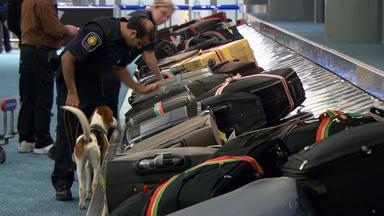 Border Patrol Canada - Einsatz An Der Grenze - Jägerparadies Auf Rädern