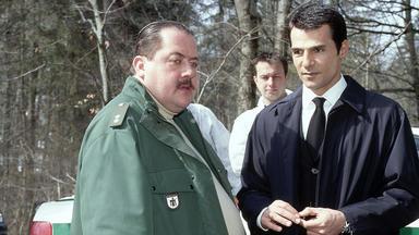 Sinan Toprak Ist Der Unbestechliche - Der Sündenfall